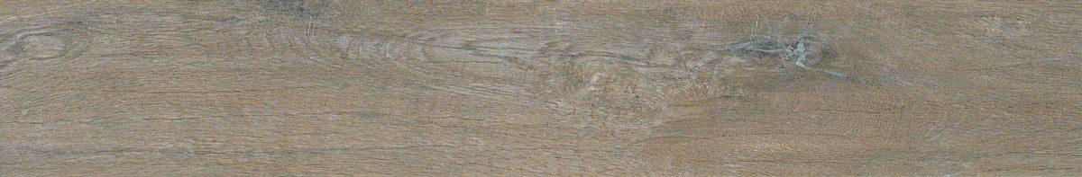 Signorino: Oak Provenzale