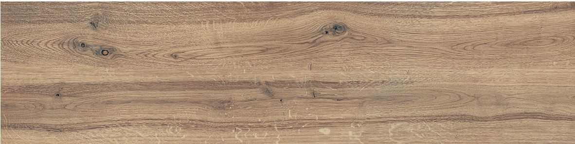 Signorino: Scottish Oak