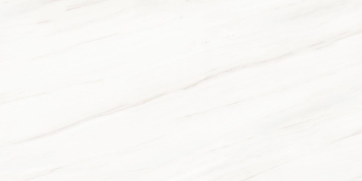 Signorino: Bianco Lasa XL