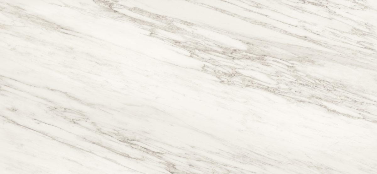 Signorino: Carrara Venato