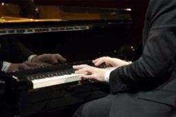 top dog entertainment pianists